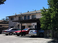 7527 Rogers Lane 5 Unit Apartment Sold in Gilroy